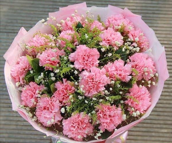 Hoa valentine cẩm chướng cho vợ
