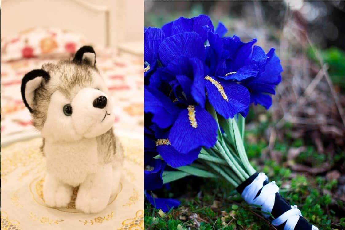 Thú bông cùng hoa diễn vĩ(Iris) quà valentine