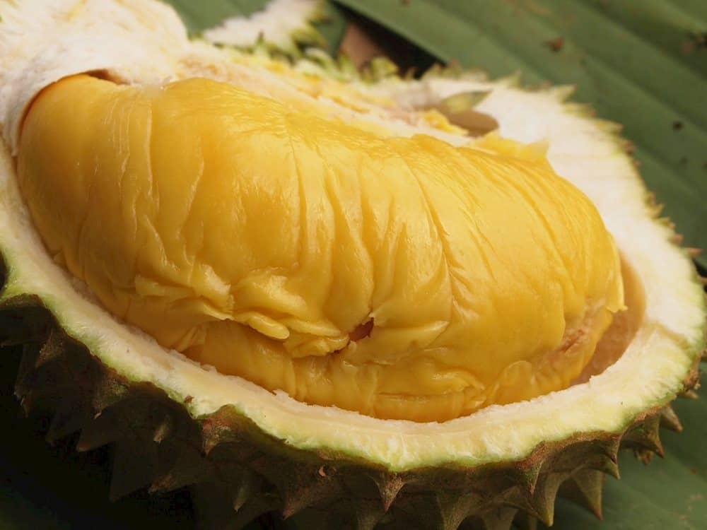 Trái sầu riêng - Nồng nàn như tình yêu của cả hai