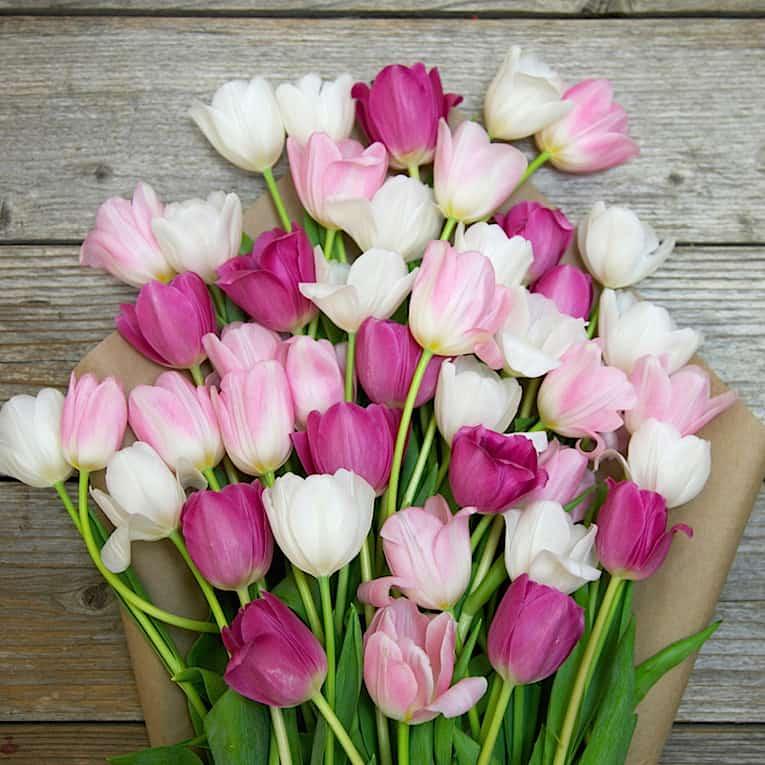 Hoa tươi là món quà không thể thiếu