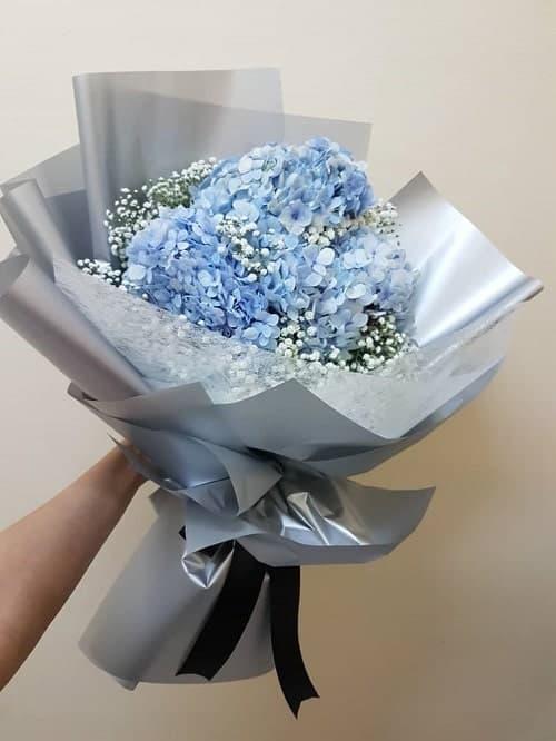 Bó hoa cẩm tú cầu tặng mẹ ngày 8/3