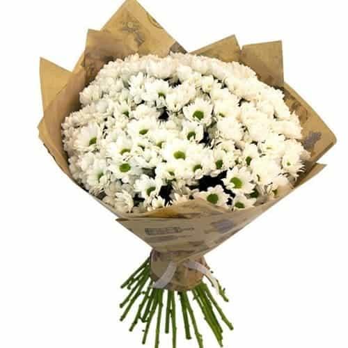 Bó hoa cúc rực rỡ