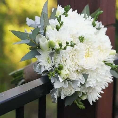 Bố hoa cúc cầm tay cô dâu