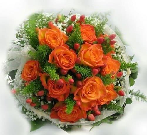 Hoa hồng cam nói lên tình yêu trong sáng