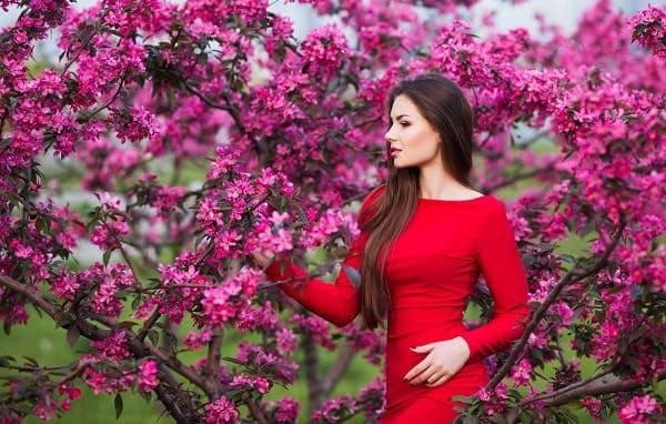 Hình ảnh hoa đẹp tự nhiên