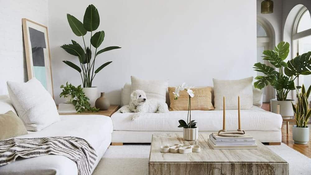 Tận dụng các góc tường góc sofa trống