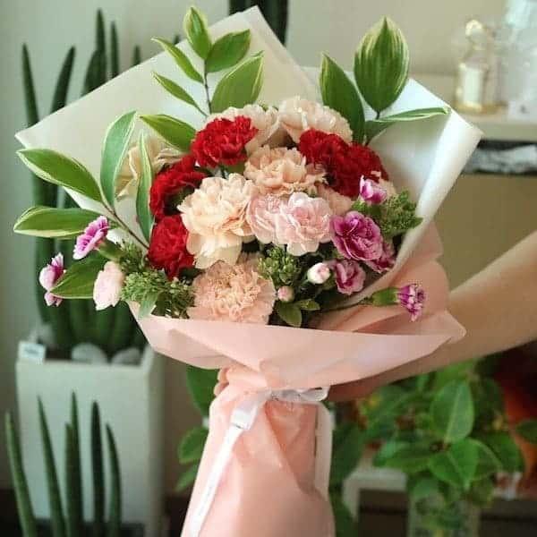 Hoa Cẩm Chướng - Hoa của tình mẫu tử